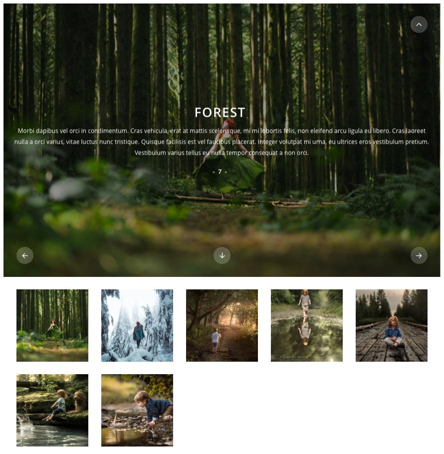 Albums Stripes v1.8 | Gallery Module for Gmedia plugin - 2