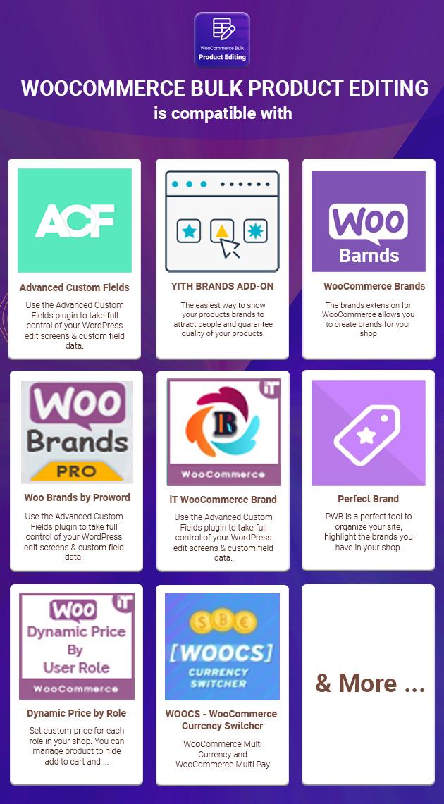 WooCommerce Bulk Product Editing - 4