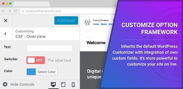 Customizer Option Framework