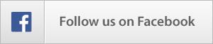 WooCommerce Extra Options with Custom Price - 2