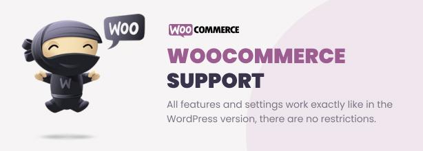Easy Video Player WordPress Plugin - 9