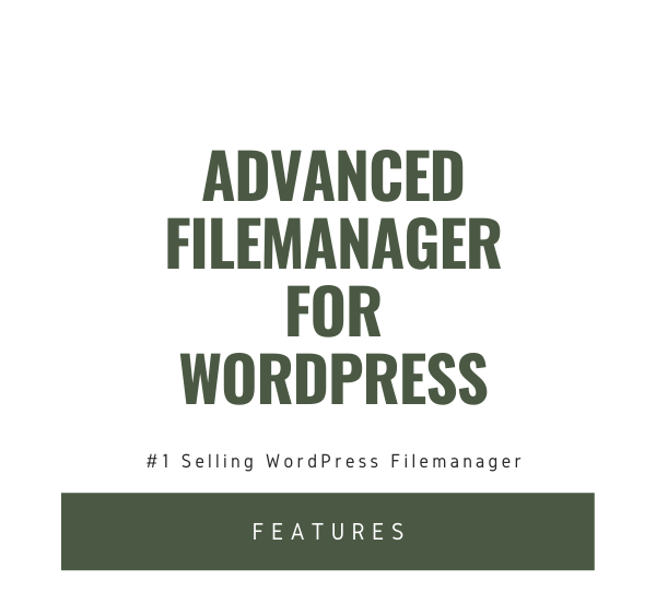 File Manager Plugin For WordPress - 3