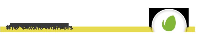 WordPress Automatic Plugin - 60