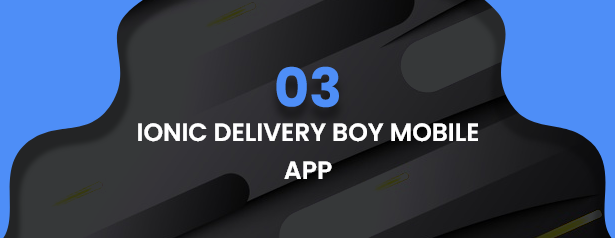Best Ecommerce Solution with Delivery App For Grocery, Food, Pharmacy, Any Stores / Laravel + IONIC5 - 43