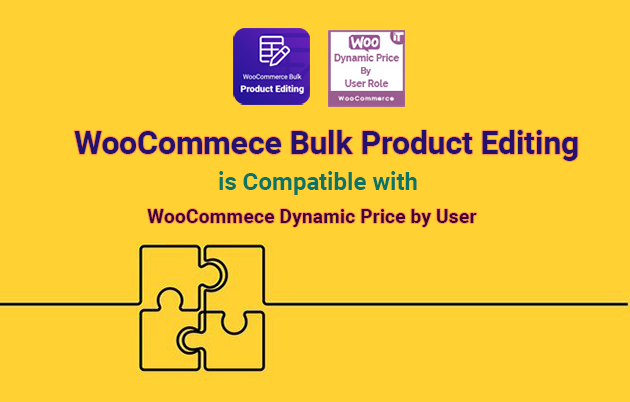 Woocommerce Dynamic Pricing By User Role - 2