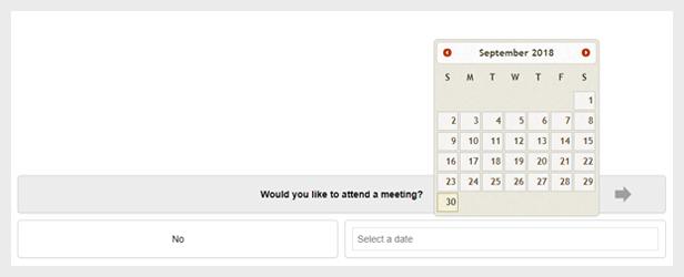 WordPress Questionnaire Date Answer