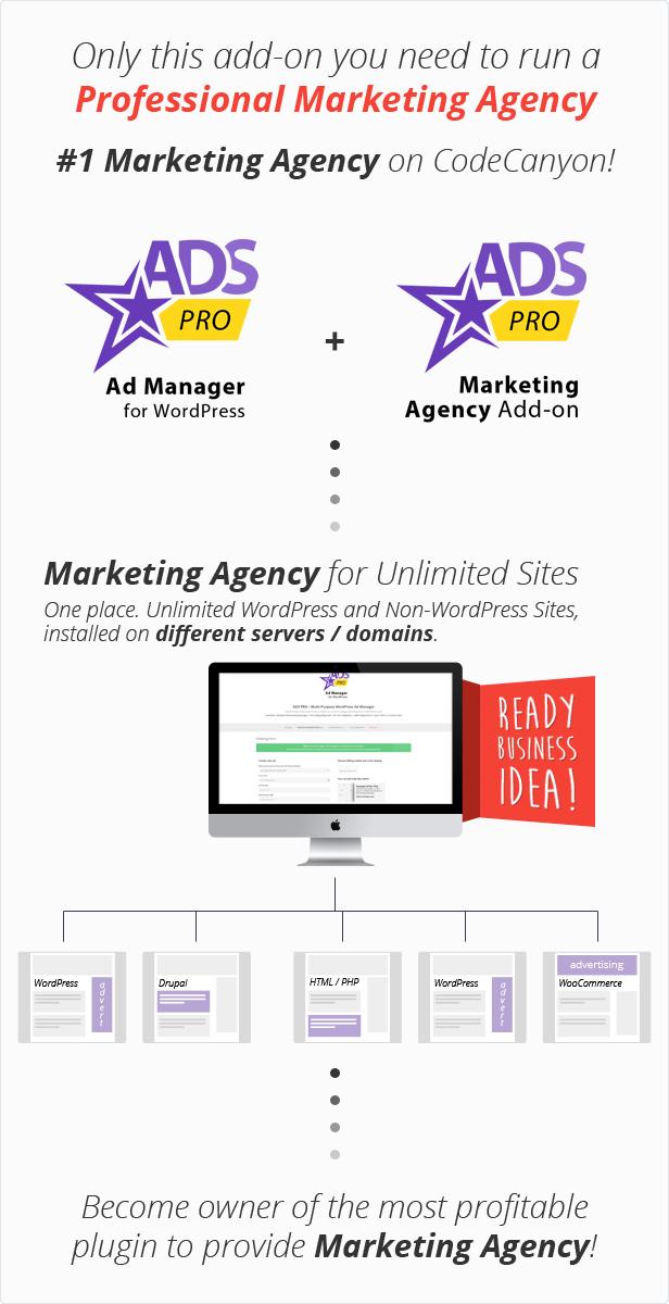 Ads Pro Add-on - WordPress Marketing Agency - 2
