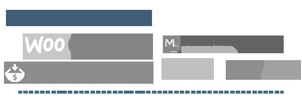 Ultimate Affiliate Pro WordPress Plugin - 4