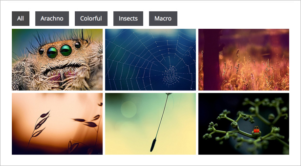 Awesome Gallery - Instagram, Flickr, Facebook galleries on your site. - 3