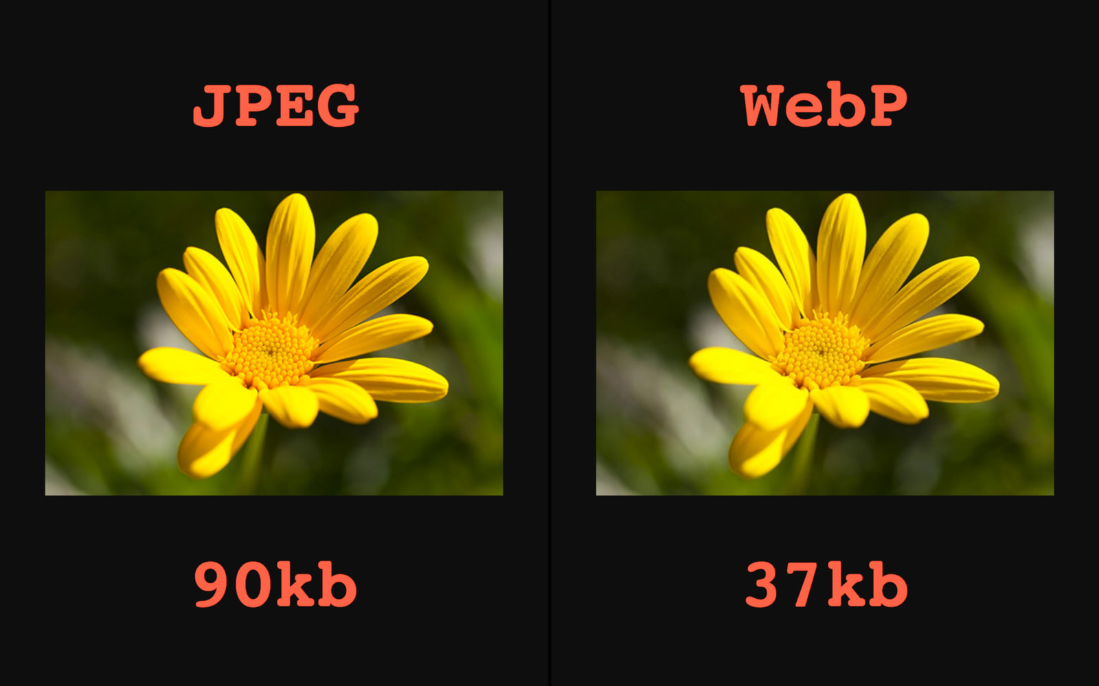 Automatic WebP & Image Compression for WordPress & WooCommerce - 9