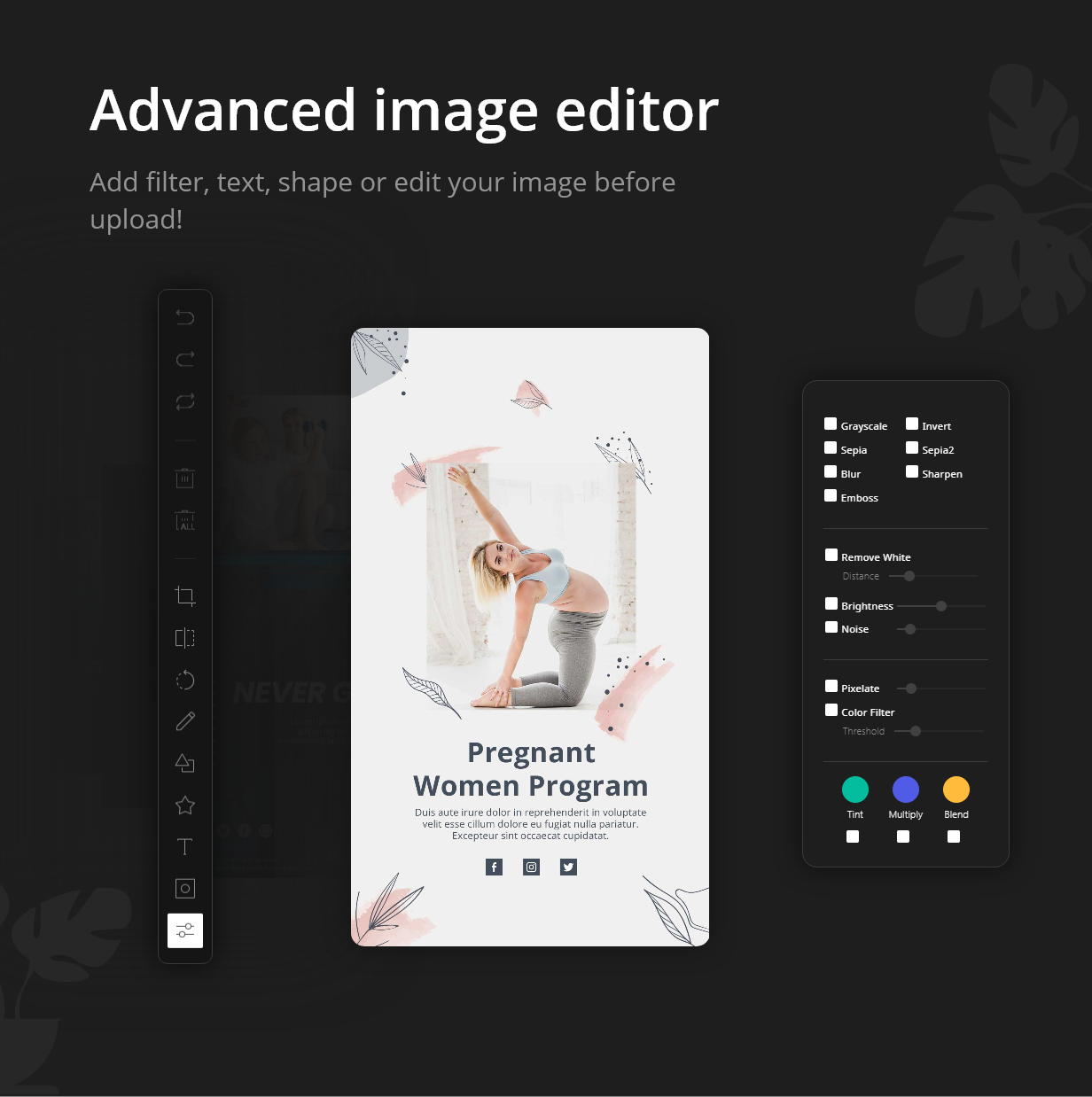 WP Story | Create Instagram Style Stories On WordPress | Filter