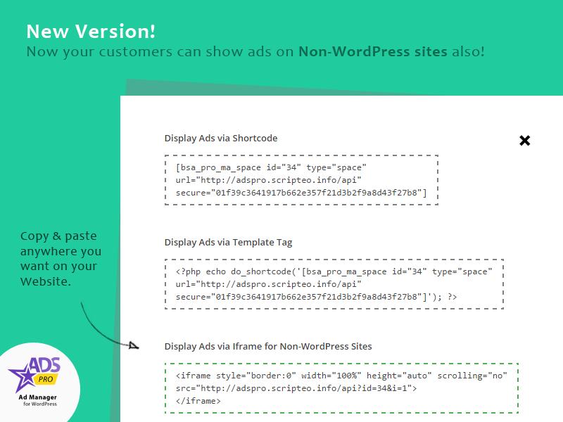 Ads Pro Add-on - WordPress Marketing Agency - 1