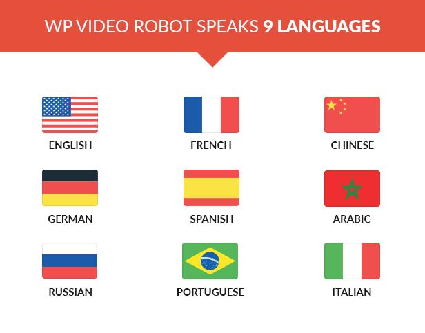 WordPress Video Robot - The Ultimate Video Importer - 17