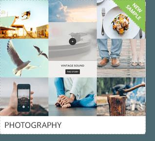 Go Portfolio - WordPress Responsive Portfolio - 14
