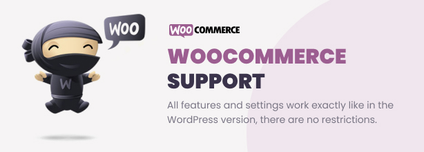 Ultimate Video Player WordPress Plugin - 9